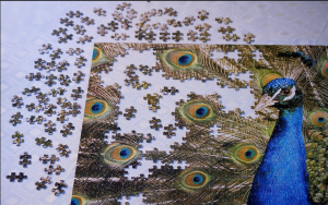 second-peacock-puzzle